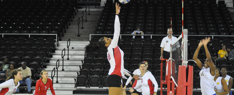 Volleyball Stays Perfect On The Season