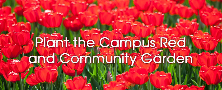 Founders' Week: Wednesday, Nov. 14 – Plant the Campus Red