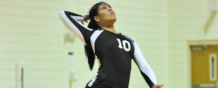 Torres Named to Volleyball Academic All-District Team