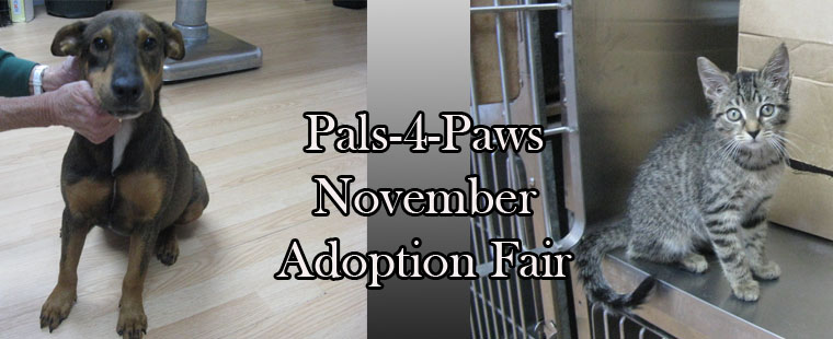 Pals-4-Paws Food Bank and Adoption Fair