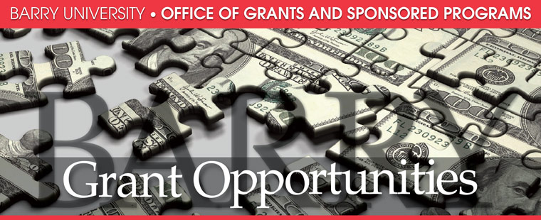 Grant opportunities for the week of January 7, 2013