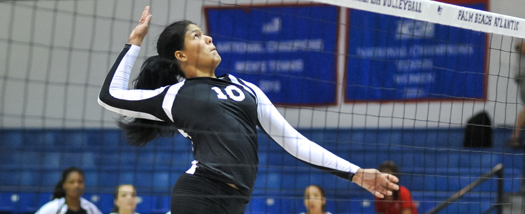 Volleyball's Torres Selected for Copa Dorada Award