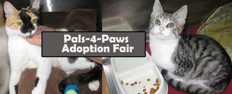 Pals-4-Paws March Adoption Fair