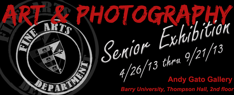 Art & Photography Senior Exhibition