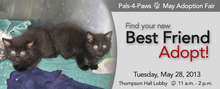 Pals-4-Paws May Adoption Fair