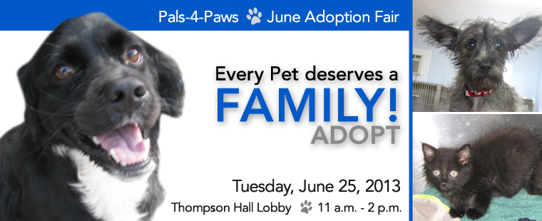 Pals-4-Paws June Adoption Fair