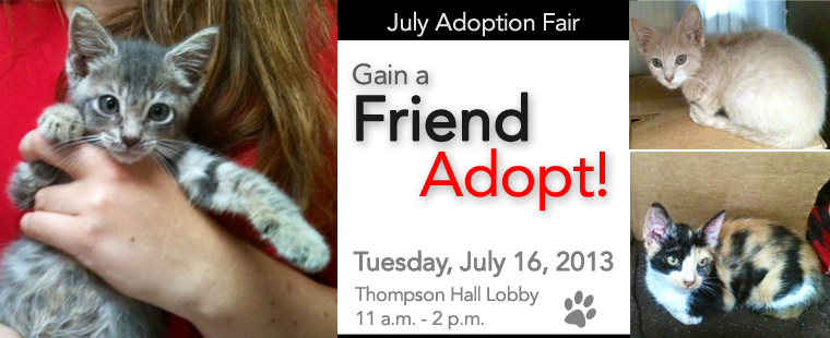 Pals-4-Paws July Adoption Fair