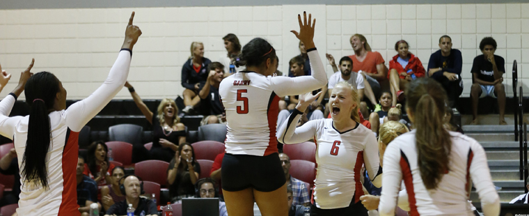 Volleyball Takes Roar Out of Lions