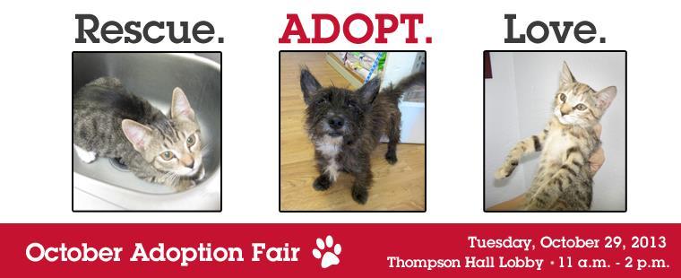 Pals-4-Paws October Adoption Fair