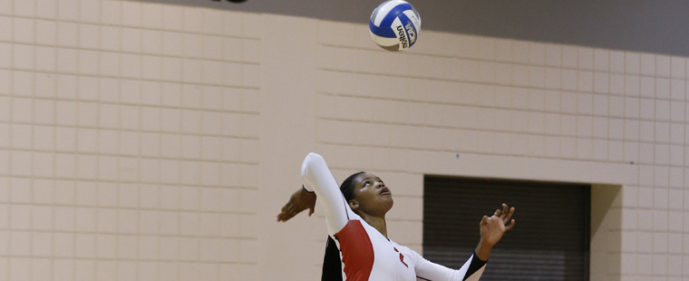 Volleyball Goes Distance with Eckerd Before Falling