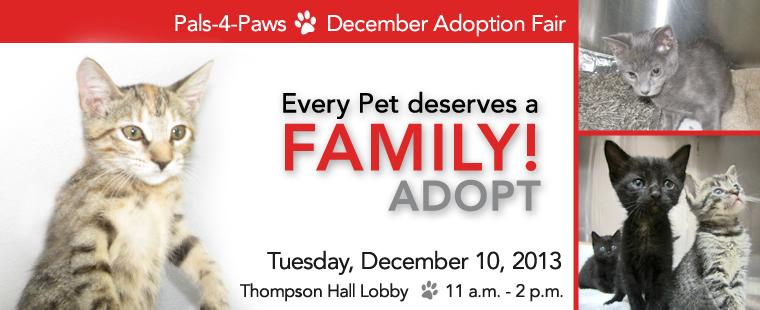 Pals-4-Paws December Adoption Fair