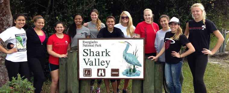 Volleyball Visits Everglades for Cleanup Project