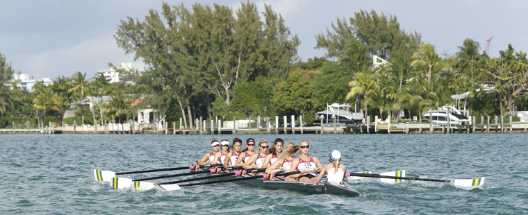 Barry Rowing's 8 Selected for NCAA Championships