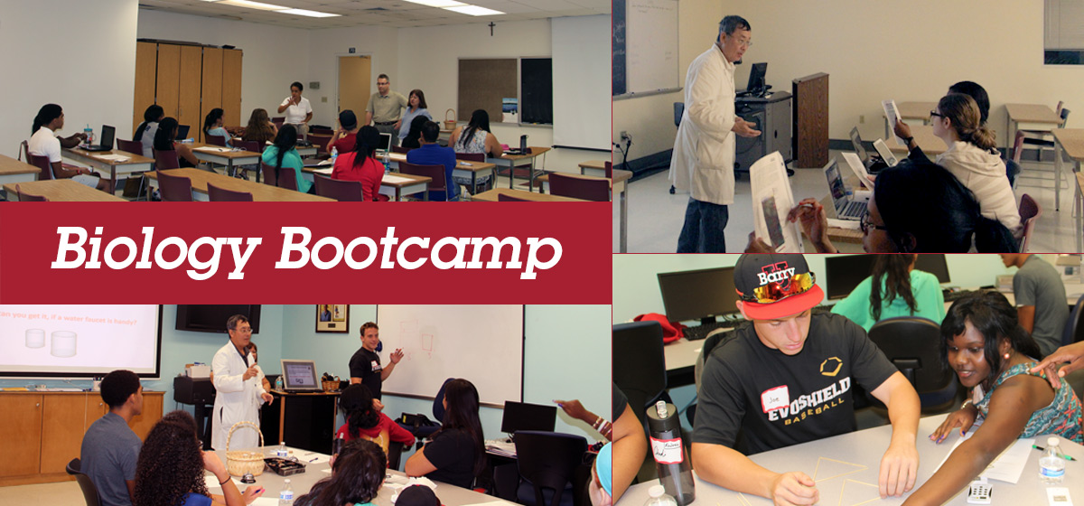 Biology Bootcamp Helps Students Anticipate Challenges and Succeed Academically