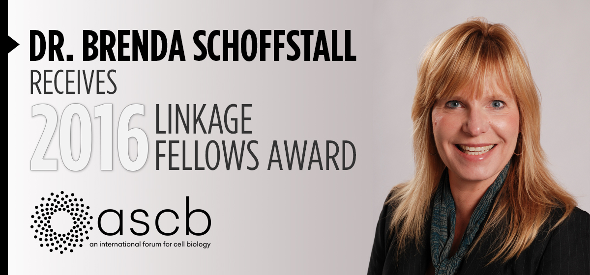 Dr. Brenda Schoffstall receives 2016 Linkage Fellows Award
