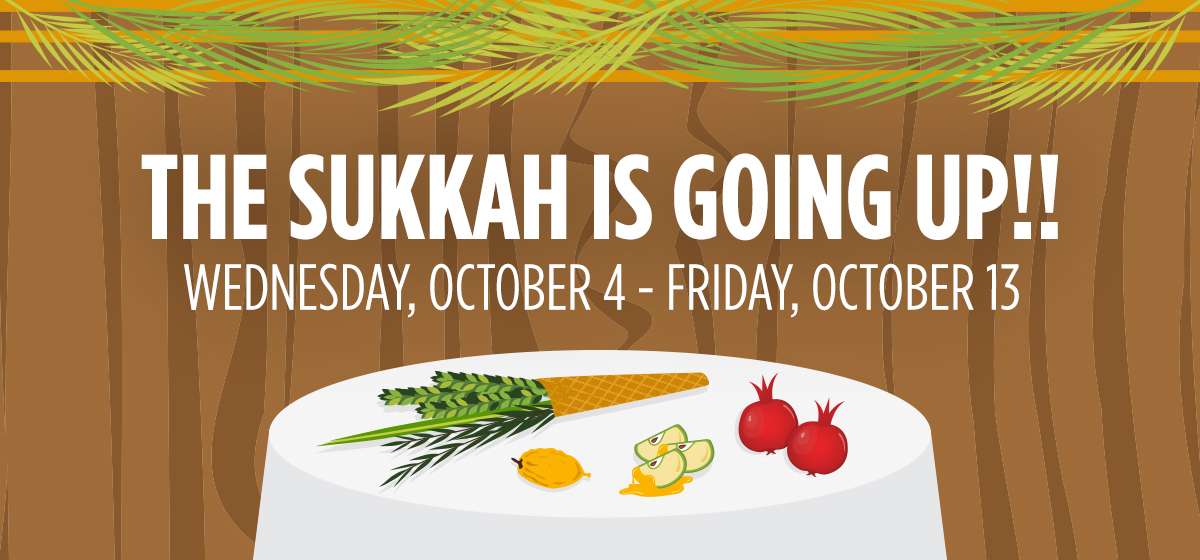 The Sukkah is Going Up!!