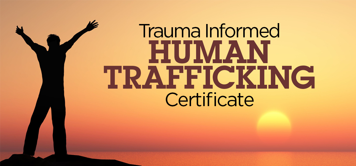 New Trauma Informed Human Trafficking Certificate
