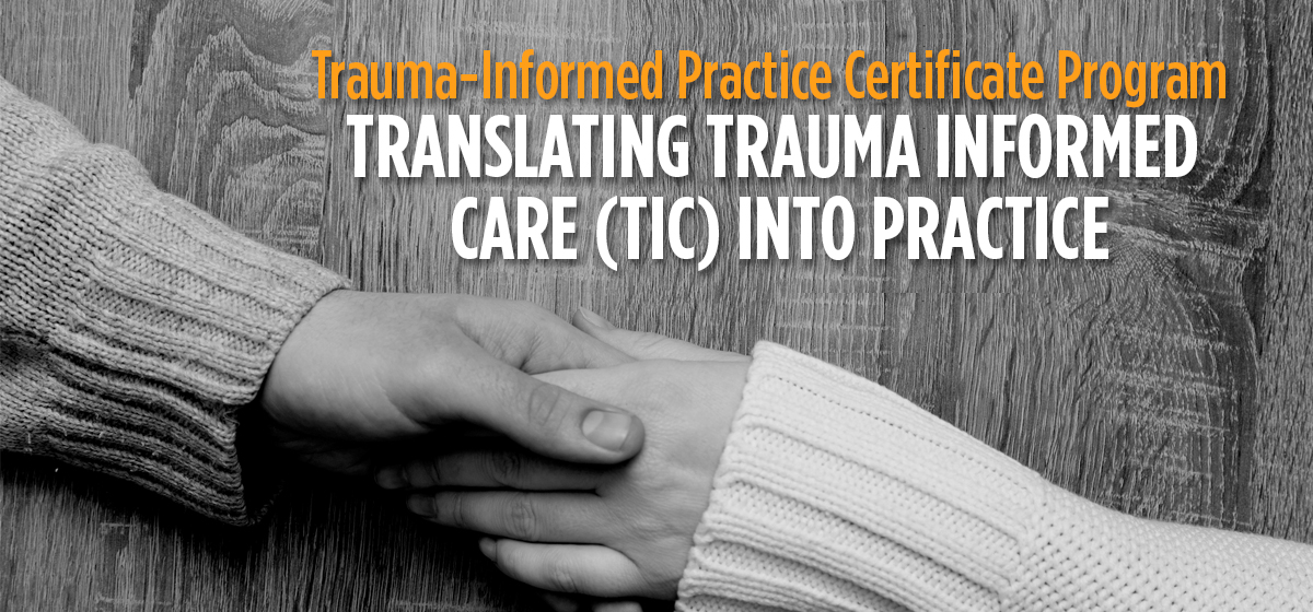 Trauma-Informed Care Training and Consultation