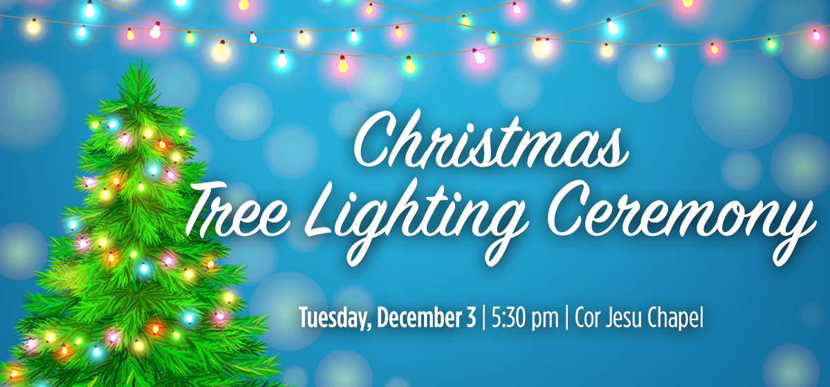Christmas Tree Lighting and International Village