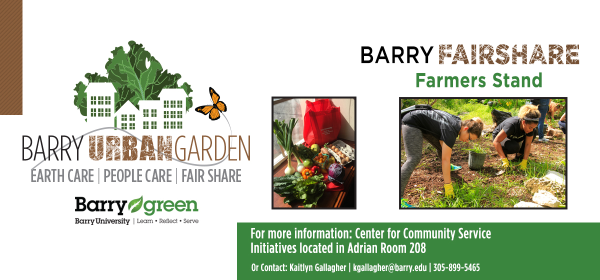 Fresh, local produce available weekly at the Barry FairShare Farmers Stand