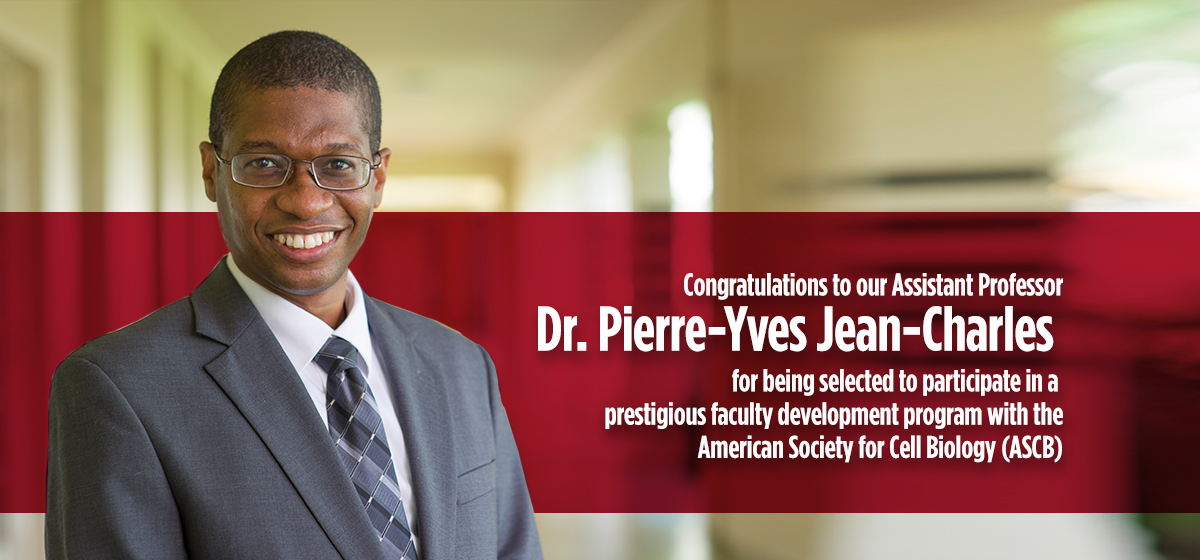 Congratulations to our Assistant Professor Dr. Pierre-Yves Jean-Charles