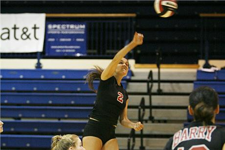Volleyball Falls to Sharks