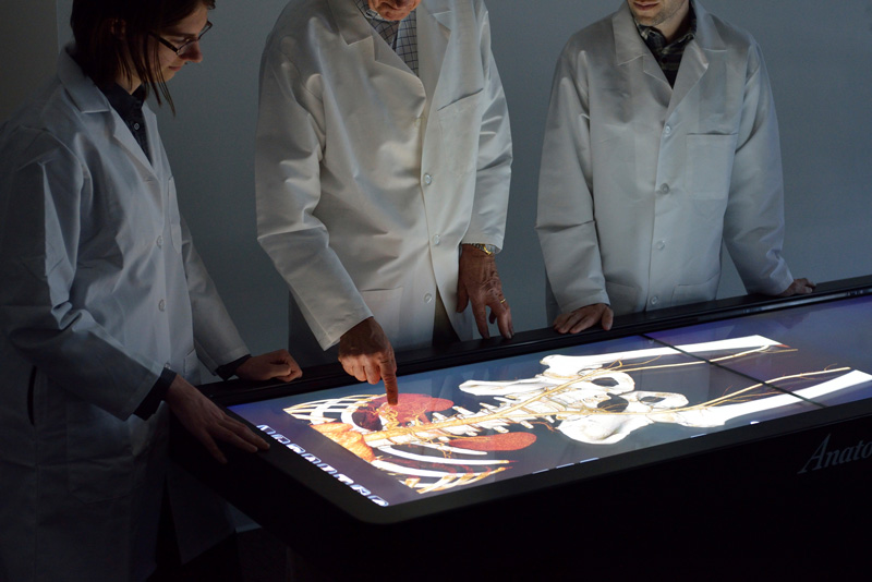Interactive Anatomy Technology About The Program Biomedical