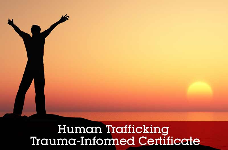Human Trafficking Coalition